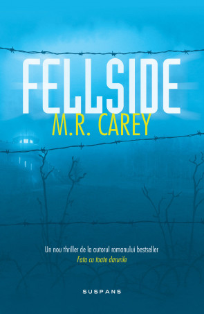 Fellside (ebook)