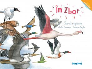 În zbor - Păsările migratoare