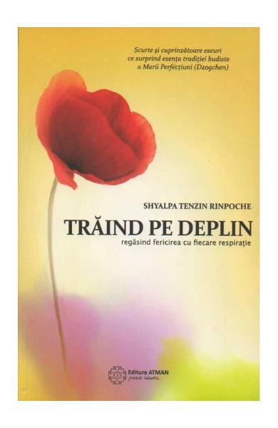 Traind Pe Deplin